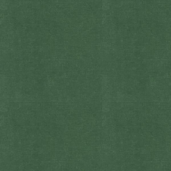 Everyday Velvet - Emerald