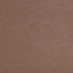 Luxury Velvet - Pebble Fabric