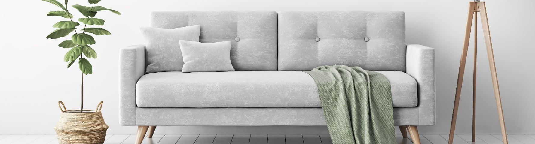 Sofa and plant